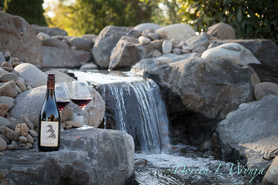Bottle shots - water feature - Roco Winery_606
