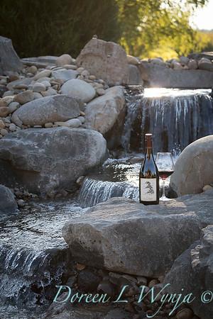 Bottle shots - water feature - Roco Winery_613
