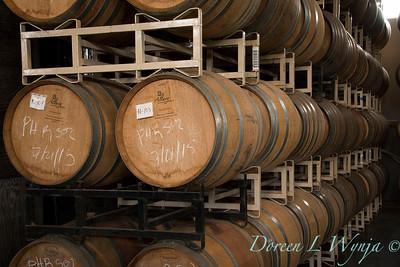 Barrel cellar_527