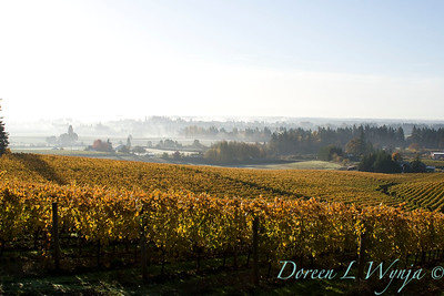 Sokol Blosser fall vineyards_026