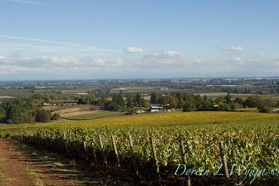 Sokol Blosser vineyards valley view_6725