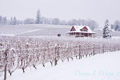 Sokol Blosser in the Snow_147