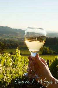Wine glass in hand - Bryan Creek vineyard_008