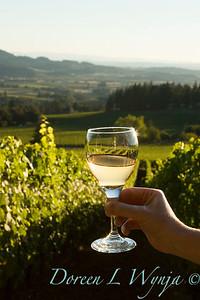 Wine glass in hand - Bryan Creek vineyard_007