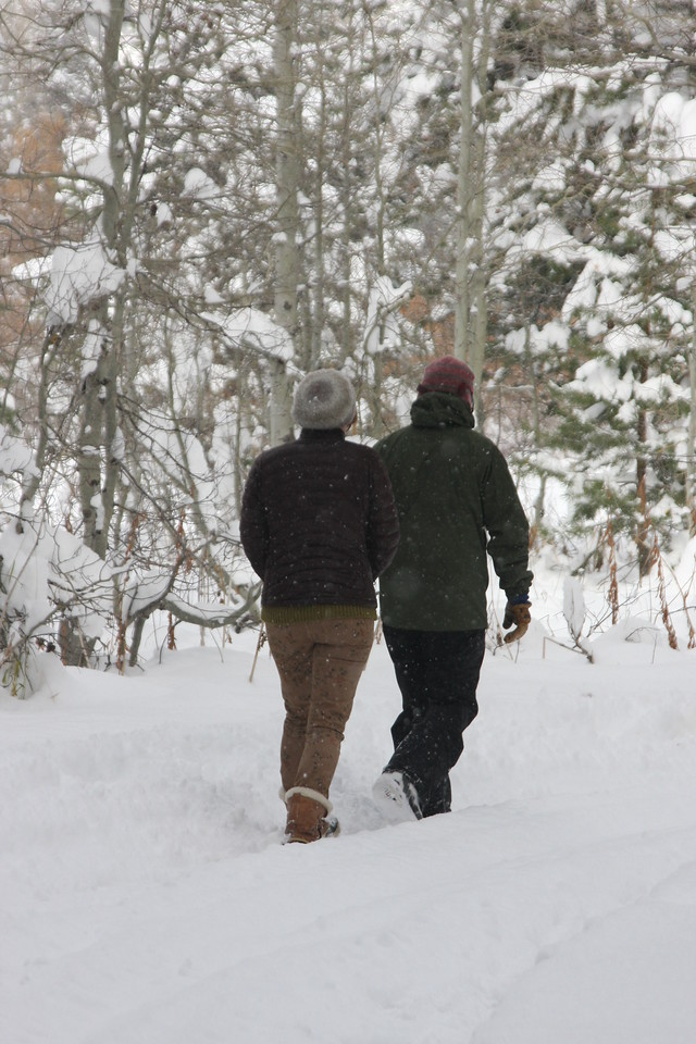 Walking through a winter wonderland...