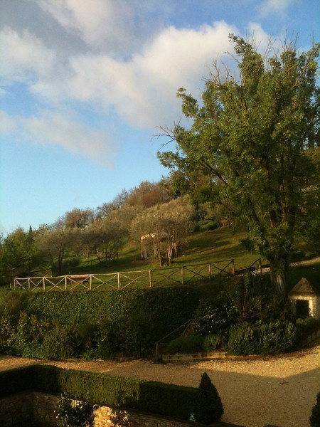 The beautiful view just outside our window at Il Borghetto.  Springtime!