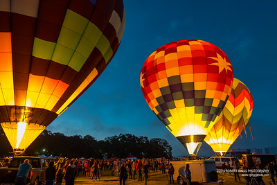 Sonoma County Hot Air Balloon Classic Dawn Patrol
