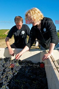 Alan and Serena inspect the grapes