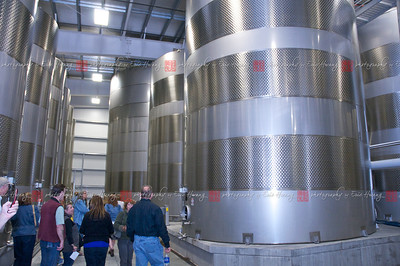 It's these 50,000 and 100,000 gallon tanks that allow this place to produce a half-million cases of wine.