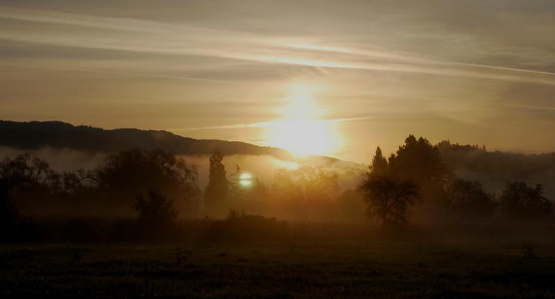 Foggy Vaca Dawn