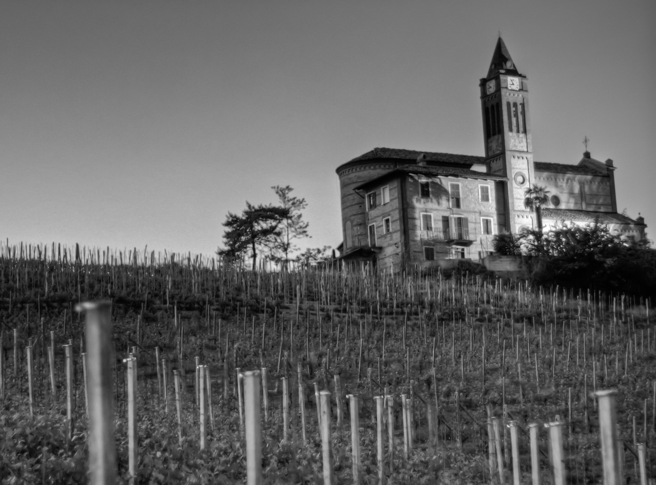 Taken in mid-April near La Morra, this chiesa in Sta Maria was actually surrounded by darkness when the photo was taken. Some remnants of the recently departed sun are behind and to the left of the church, the rest of the lighting used here was from the sole light facing the clock-tower. Cru Nebbiolo/Barolo vineyards are in the foreground.