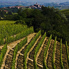 Photo taken near Perno, looking toward Serralunga d'Alba, with Bussia just a few km to camera left/rear.The soil, symmetry, angles, slopes, shadows, and historical landmarks caught my eye this day. These things, together with the spirit of the Langhe people make this one of the greatest winegrowing regions of the world.