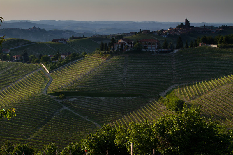 The day's last few rays of sunshine in the heart of Barolo.