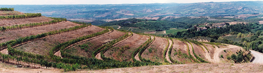 Antinori Panorama Tuscany vineyards