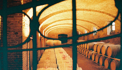 Barrel aging room, Ceretto