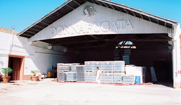 Donnafugata Winery