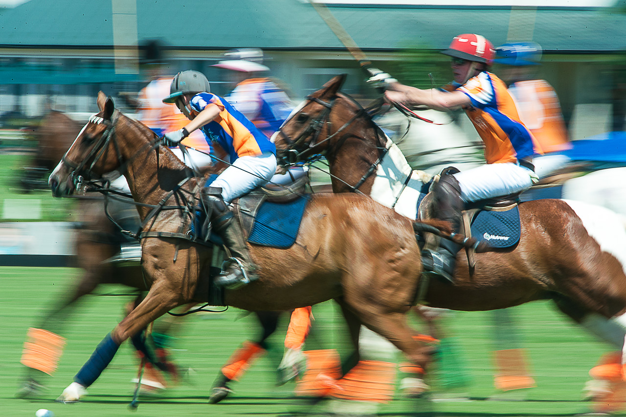 POLO-KINGS-120-X2.jpg