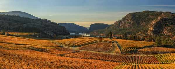 Blue Mountain Autumn Sunrise 5