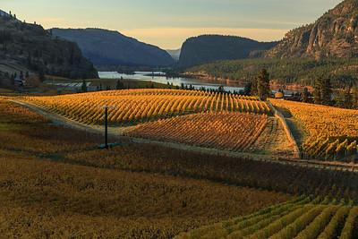 Blue Mountain Autumn Sunrise 3