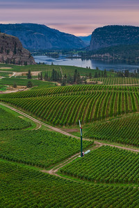 Blue Mountain Vineyards And Cellars Vertical Dusk