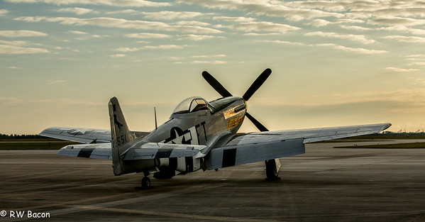 P51 Mustang - Early Morning