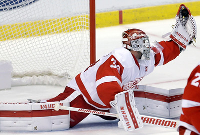 APTOPIX Red Wings Panthers Hockey