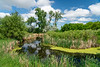 The Discovery Nature Sanctuary in Winkler, Manitoba, Canada.