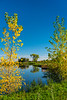 The Discovery Nature Sanctuary with fall foliage color in Winkler, Manitoba, Canada.