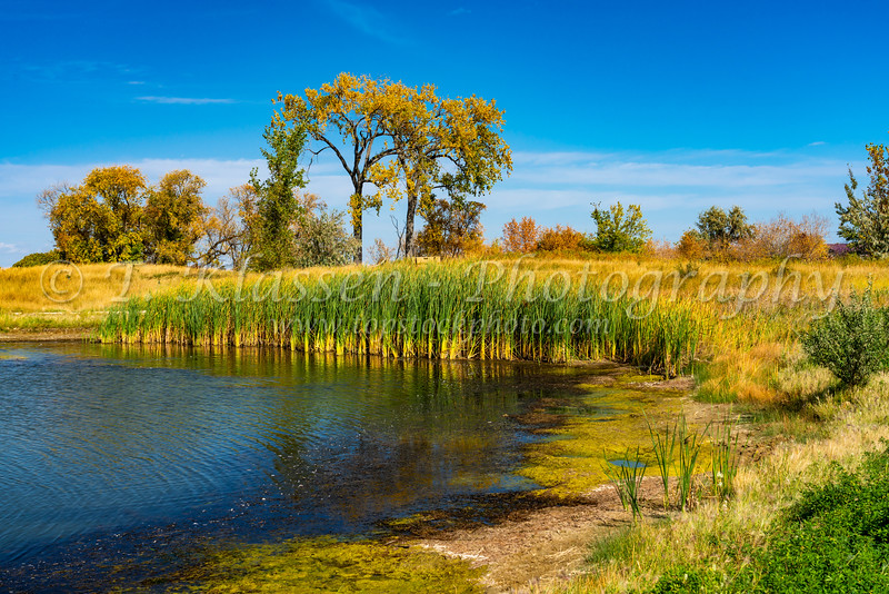 A small pond and fall foliage color at the  Discovery Nature Sanctuary, Winkler, Manitoba, Canada.