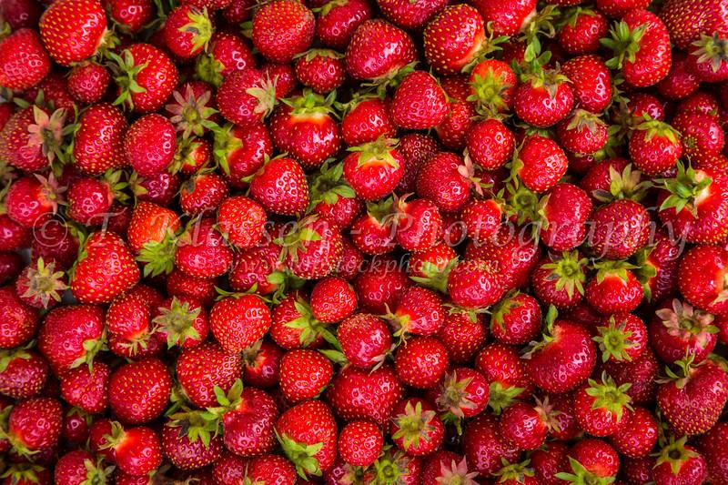 Closeup of freshly picked strawberries at Winkler, Manitoba, Canada.