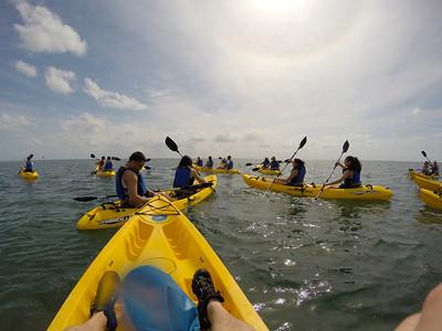 Activity - Kayak