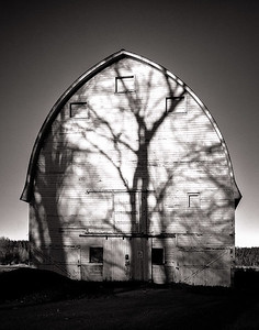Wood Barn (nisqually)