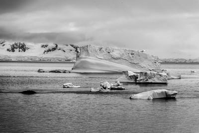 Paradise Bay, Antarctica