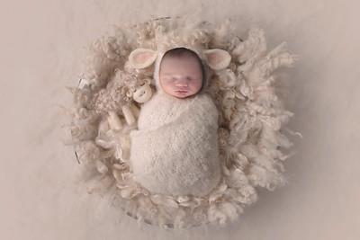 Winnie's Newborn Session