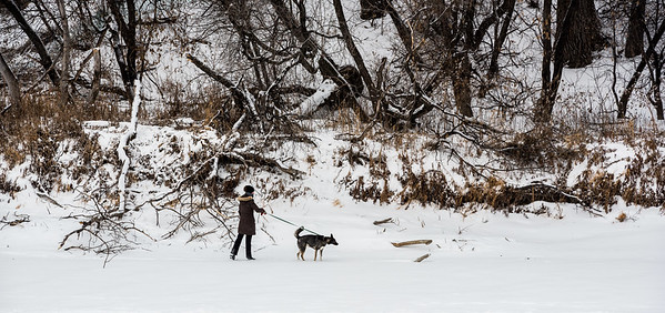 DAVID LIPNOWSKI / WINNIPEG FREE PRESS  A woman walks her dog on the Assiniboine River Sunday January 14, 2018.