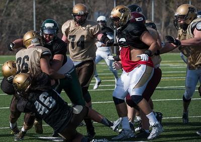 DAVID LIPNOWSKI / WINNIPEG FREE PRESS  Scrimmage action during the University of Manitoba Bisons 2016 spring camp Sunday May 1, 2016 at the University of Manitoba Turf Fields.