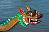 Dragon boat races on the Red River in Winnipeg, Manitoba, Canada.