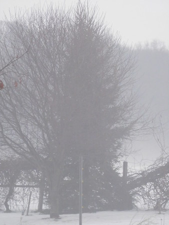 Fog and Rain 2-11