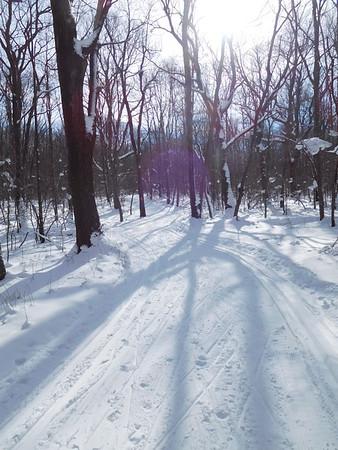 Laurel Ridge Orange Trail