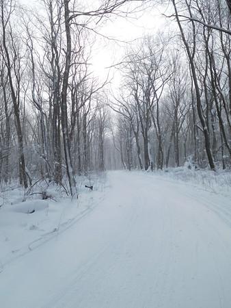 Laurel Ridge and Frozen Streams