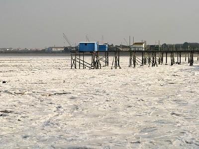 Winter 2009*