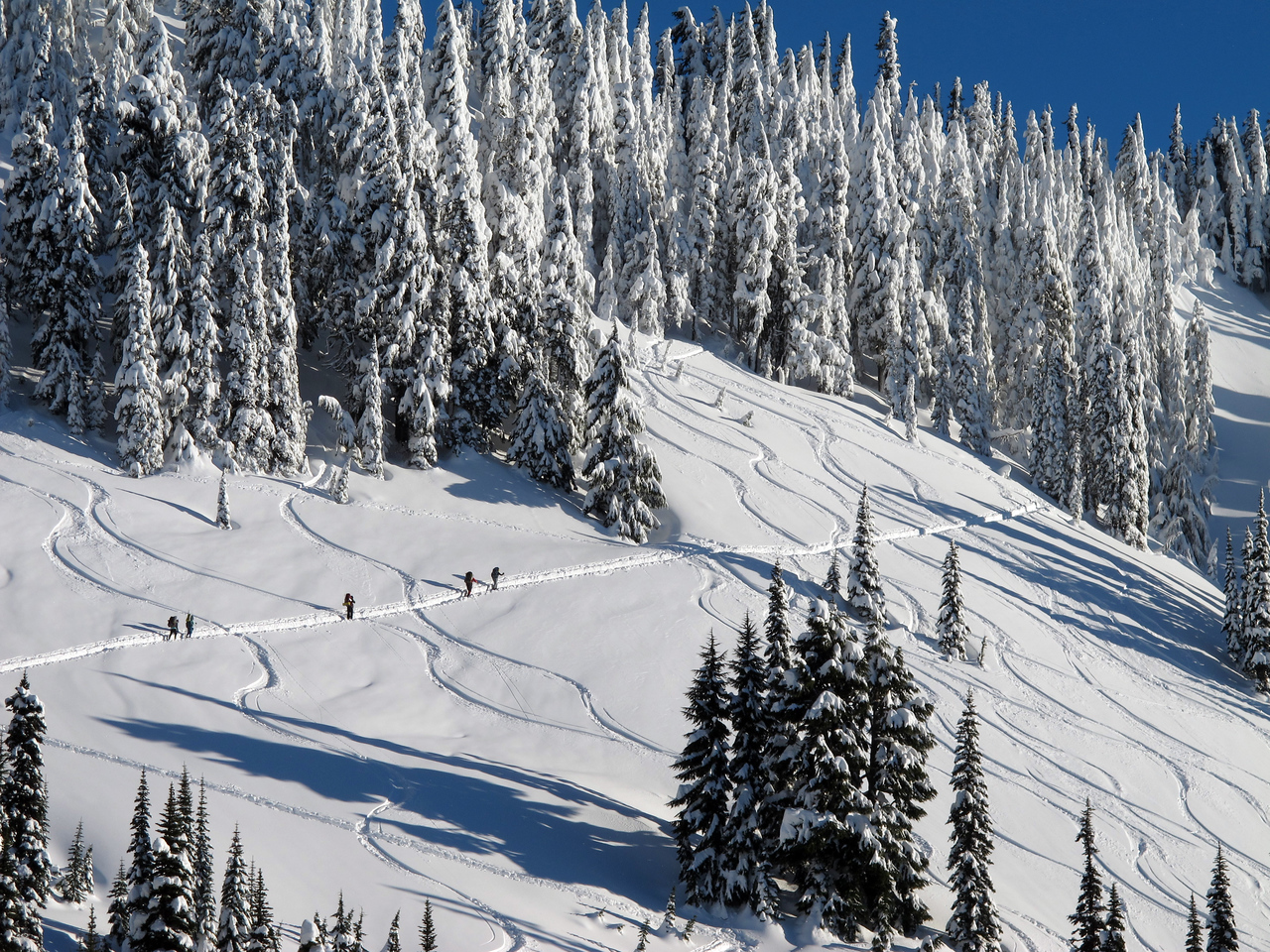 Skiers/snowboarders climbing up on the steep slope of Mazama Ridge (where we failed to reach the ridge).