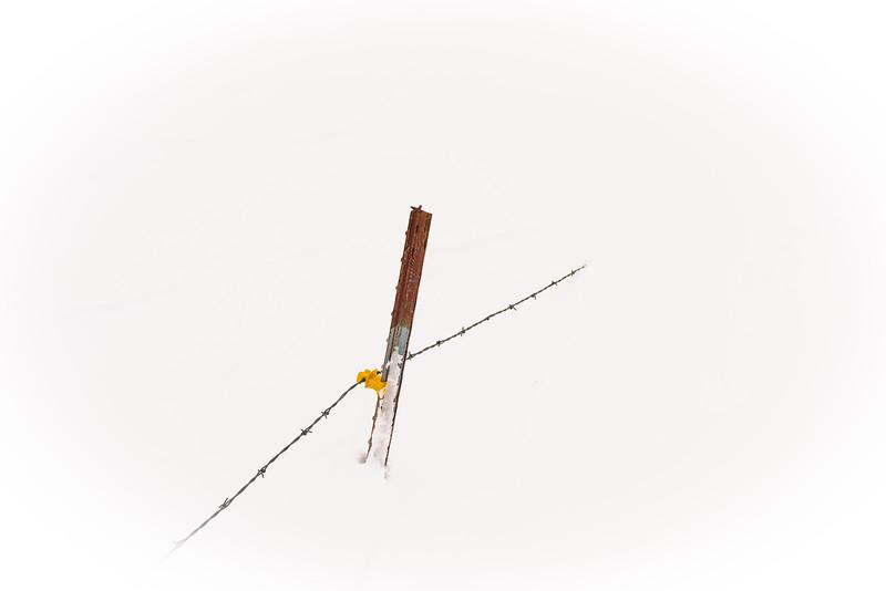 Fencepost in Snow 1.0