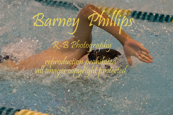 Sentinels, Cardinals and Patriots Swim.....by Barney