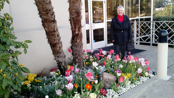 Spring Flowers at the Oakland LDS Temple Visitors Center