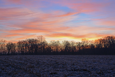 Sunrise Over December Cornfield