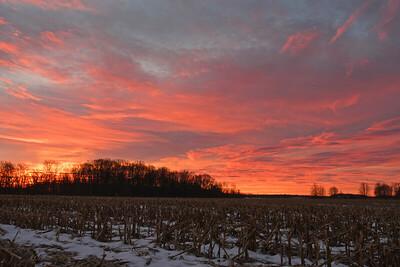 Snowy Cornfield Sunrise