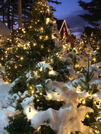 Winter Break 2016