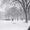 Winter on campus, 1938.