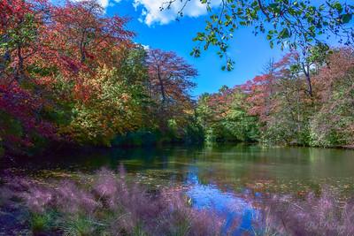 Autumn Potpourri
